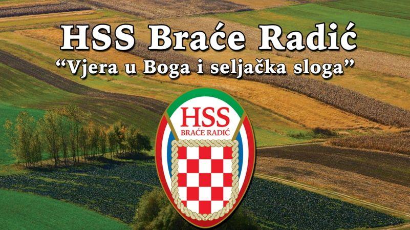 hss brace radic 2