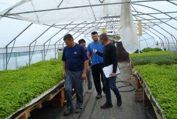 Ministarstvo poljoprivrede: 265 milijuna kuna iz Programa ruralnog razvoja za mlade i male poljoprivrednike