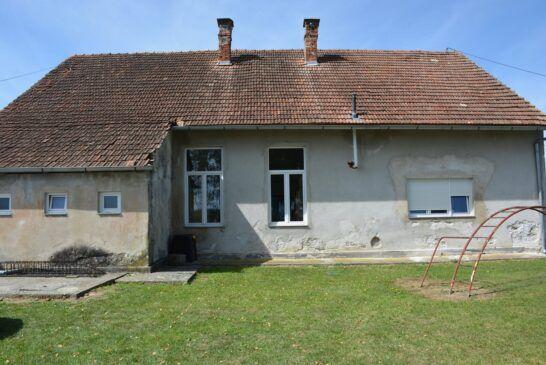 lasovac (2)