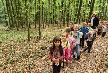 Mali planinari Dječjeg vrtića Bjelovar uživali u Dječjoj planinarskoj stazi na Bilogori